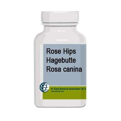 Rose Hips - Rosa Canina - Dr Clark