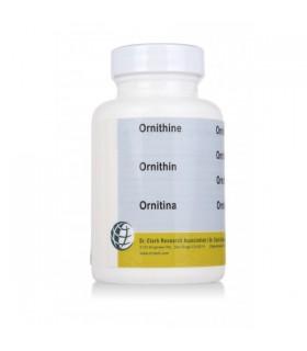 Ornithine - Dr Clark